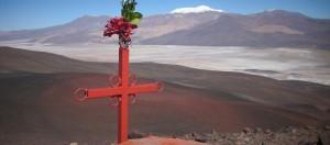 Puna, Catamarca, vicuñas, paisajes