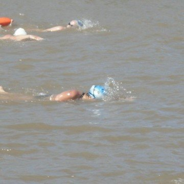 maraton acuática, rio, competencia, natación, nadador