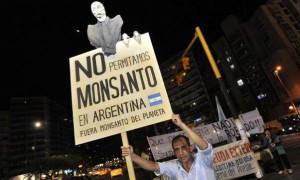 Monsanto, agrotóxicos, ambiente, ecología