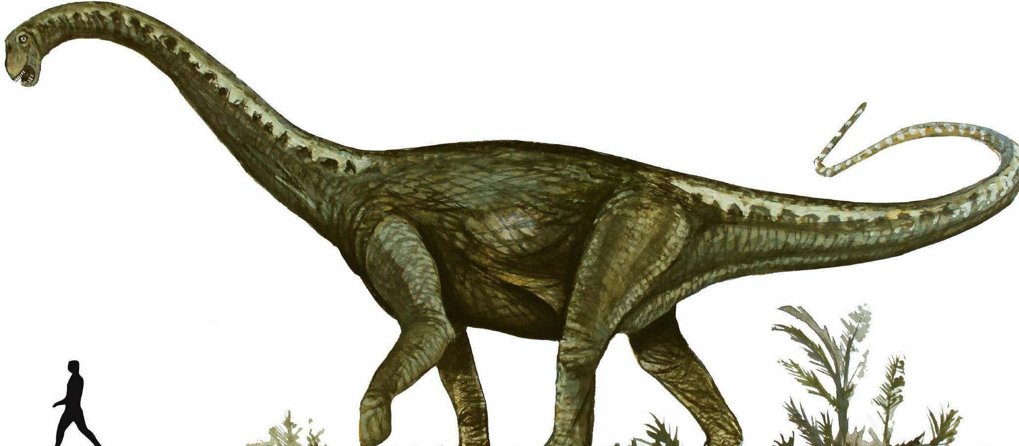 Mendoza, dinosaurio, paleontólogos