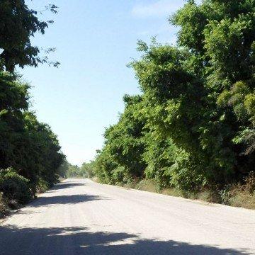 Punta Indio, reserva, Unesco, ecología