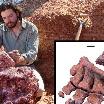 Descubrimiento, Mendoza, dinosaurio
