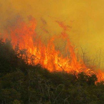Fuego Neuquén incendio Villa Pehuenia