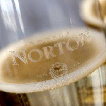 Norton copa