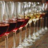 vinos, feria, producción