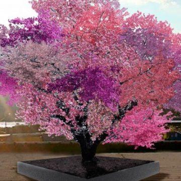 árbol, arte, frutas,