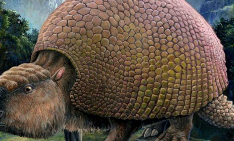 gliptodonte, General Belgrano, animales
