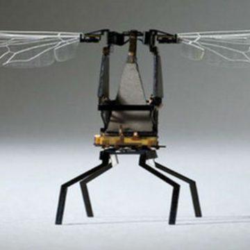 abeja, robot, invento