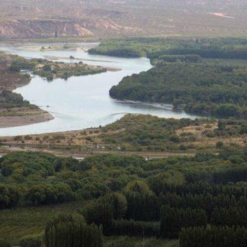 Río Negro, contaminación, ecología, naftaleno