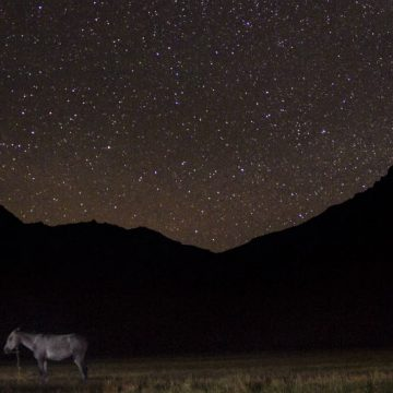 documental, San Martín, Cruce de los Andes
