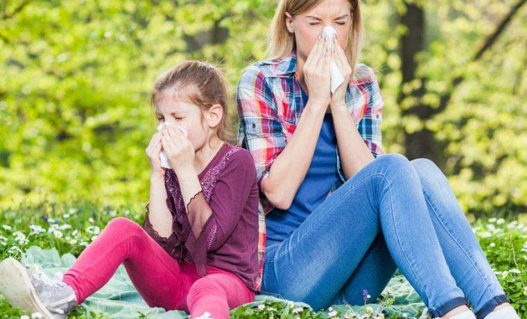 alergias, salud, gestación
