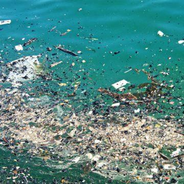 plástico, océano, ecología, ONU