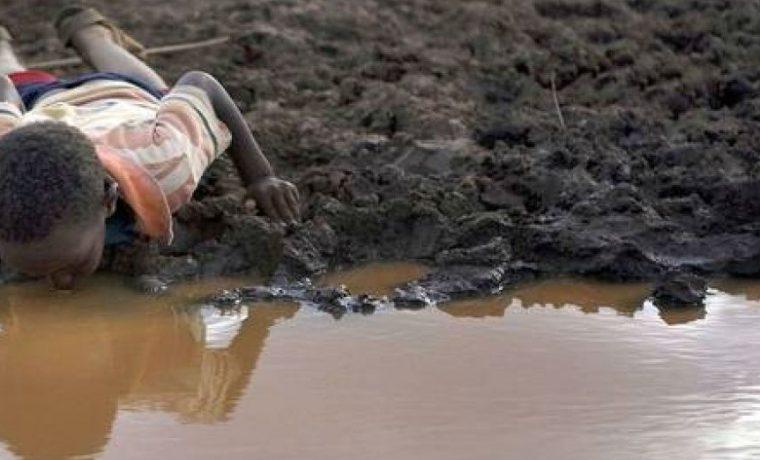 Día Mundial del Agua, agua, ecología, salud
