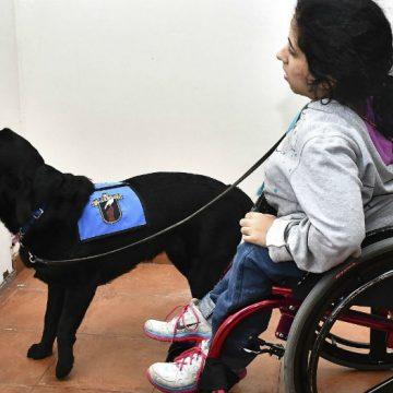 Ezeiza, penal, discapacidad, perros