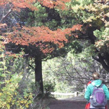 Traful, Patagonia, turismo