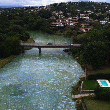 Villa Carlos Paz, Córdoba, ecología, lago San Roque