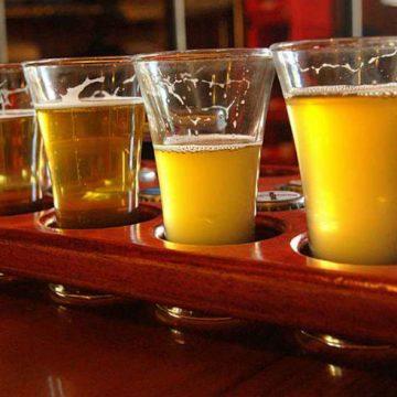 cerveza artesanal, Mar del Plata, turismo