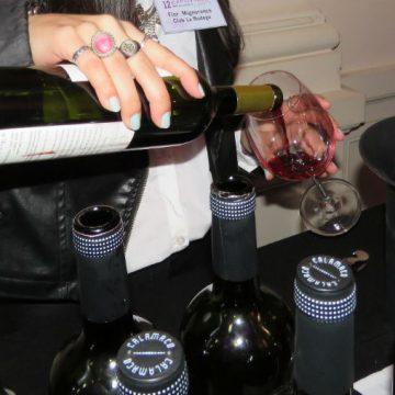 Bragado, vinos, Expovinos, feria, cultura
