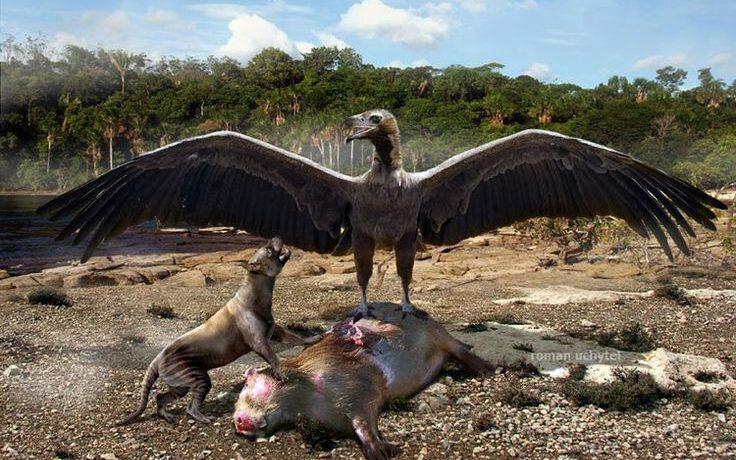 Mar del Plata, restos fósiles, paleontólogo, ciencia