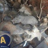 animales, Santa Fe, extinción, ecología