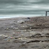 plastico, ecología, contaminación, UBA, océano