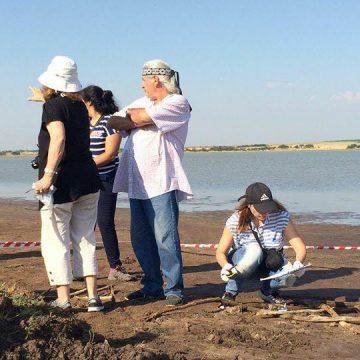 La Pampa, cultura, arqueología