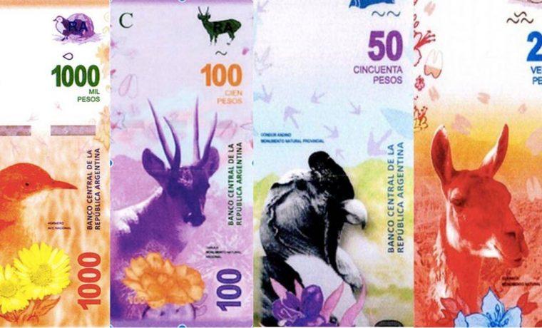 billetes, animales, cóndor