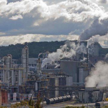 contaminación, ecología, ONU