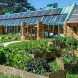 escuela sustentable, ecología, Mar Chiquita