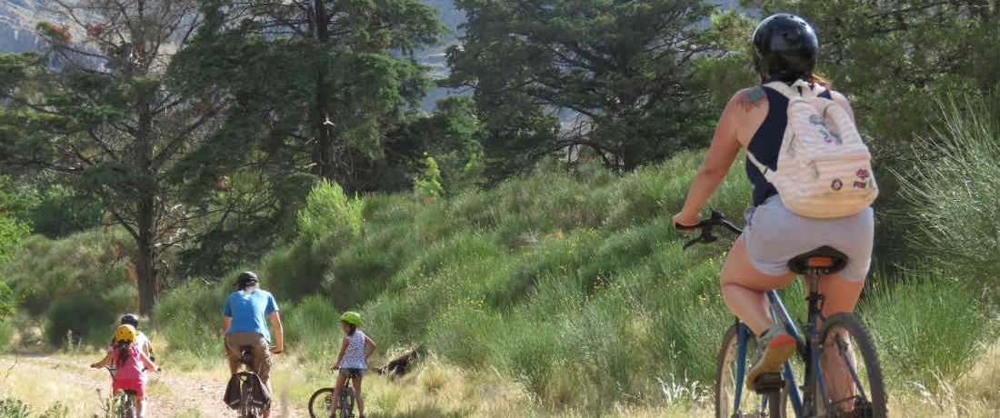 bicicleta, Día de la Bicicleta, salud
