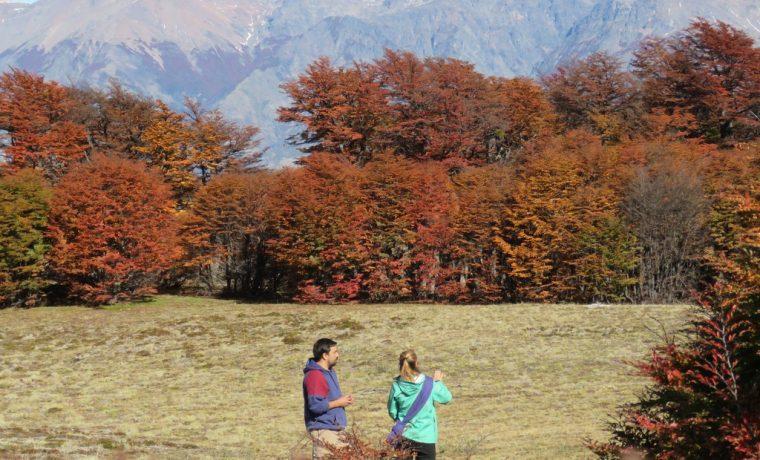 Parque Nacional Los Alerces, Esquel, turismo, Rincón del Sol