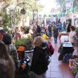 feria, El Patio de las Rosas, Lomas de Zamora, cultura