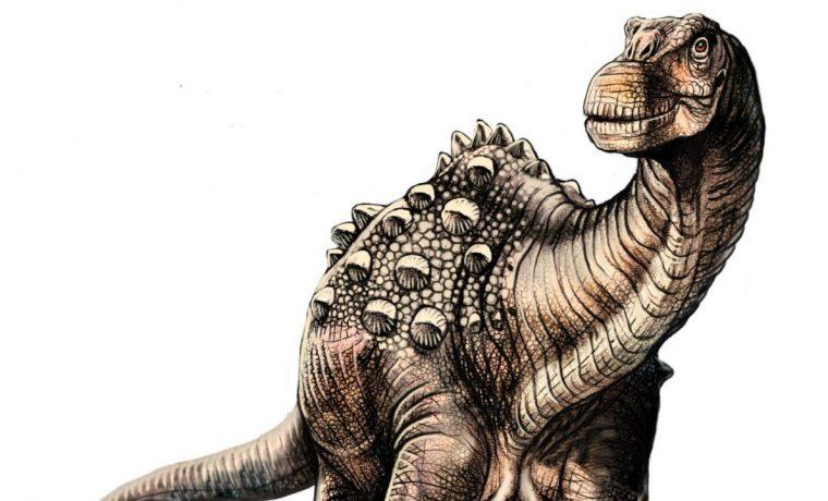dinosaurio, CONICET, ciencia